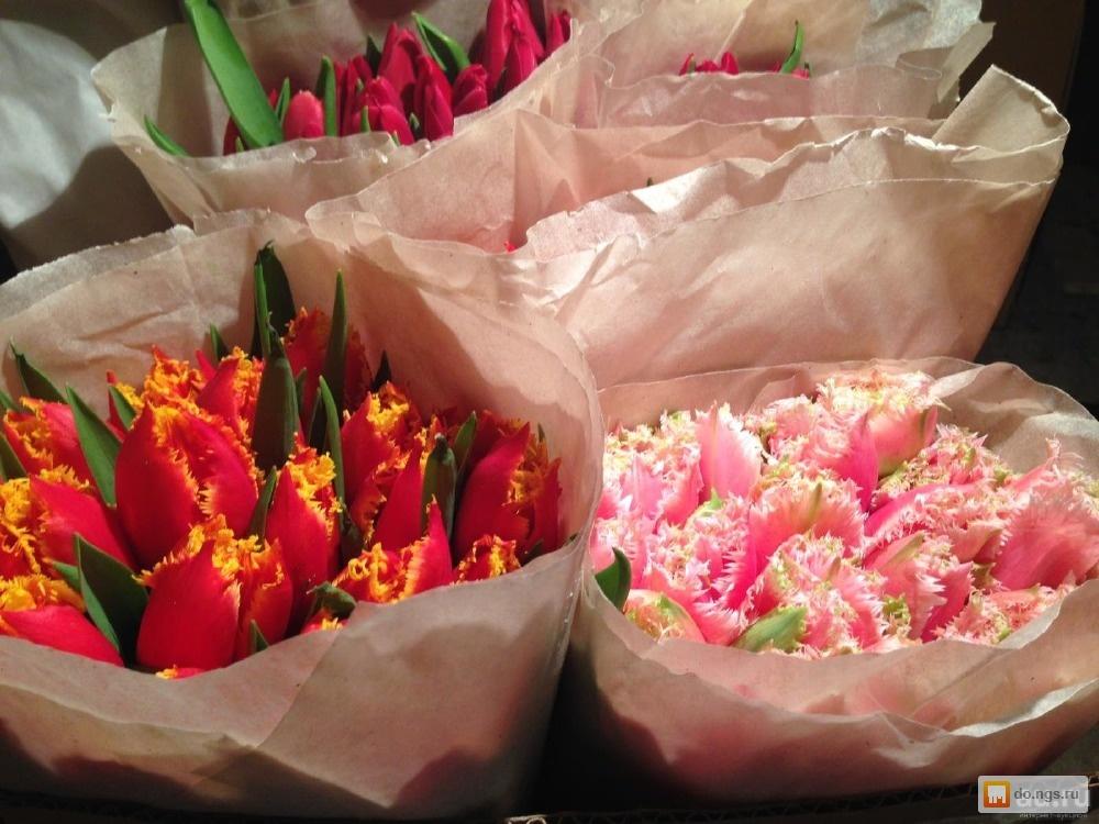 Питомник растений купить рассаду цветов оптом в Москве
