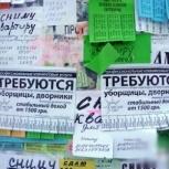 Расклейка объявлений. Распространение по почтовым ящикам, Красноярск