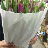 Тюльпаны оптом из голландской теплицы Borst, Triflor, Красноярск