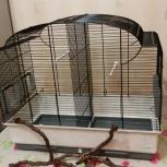 Продам клетку для средних попугаев, Красноярск