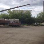 Воровайка длинномер, Красноярск