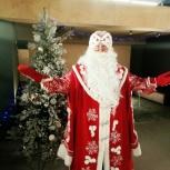 Дед Мороз и Снегурочка, Красноярск