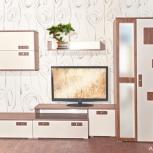 Набор мебели Модерн Люкс, Красноярск