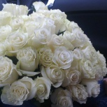 25 белых роз в букете на 8 марта, Красноярск