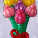Тюльпаны из воздушных шаров, Красноярск