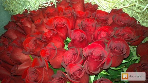 изображений 101 роза букет цена красноярск сочинений